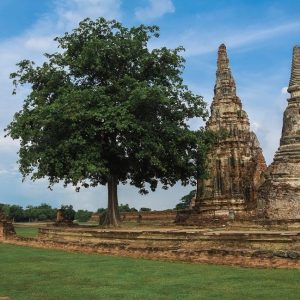The 3 Best Day Trips from Bangkok