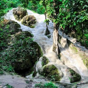 The Bua Tong Sticky Waterfalls: Chiang Mai's Hidden Gem
