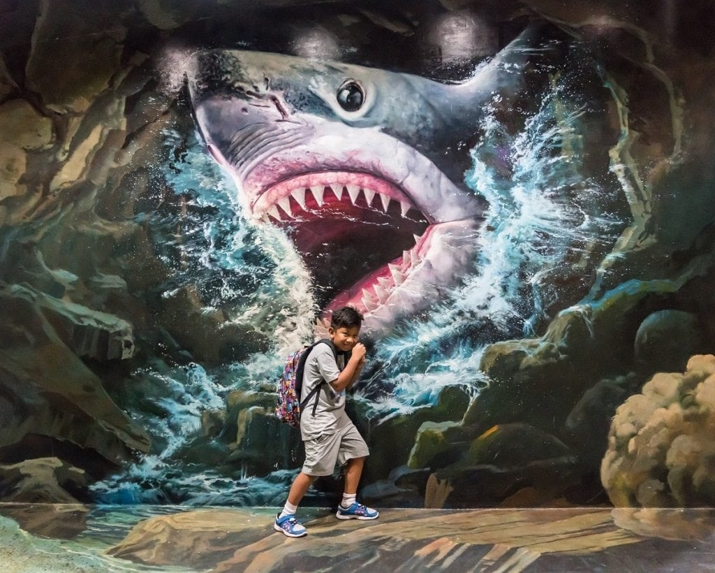Probably the funnest museum in Chiang Mai, the 3D Art Museum is super cool.