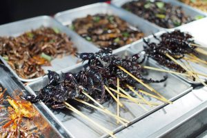 Eating insects in Bangkok banner