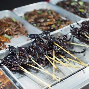 Eating Insects in Bangkok: Creepy, Crawly, Crunchy Goodness