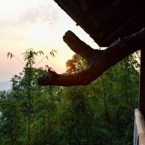 A Bed Amongst the Leaves: Thong Pha Phum's Famous Treehouses