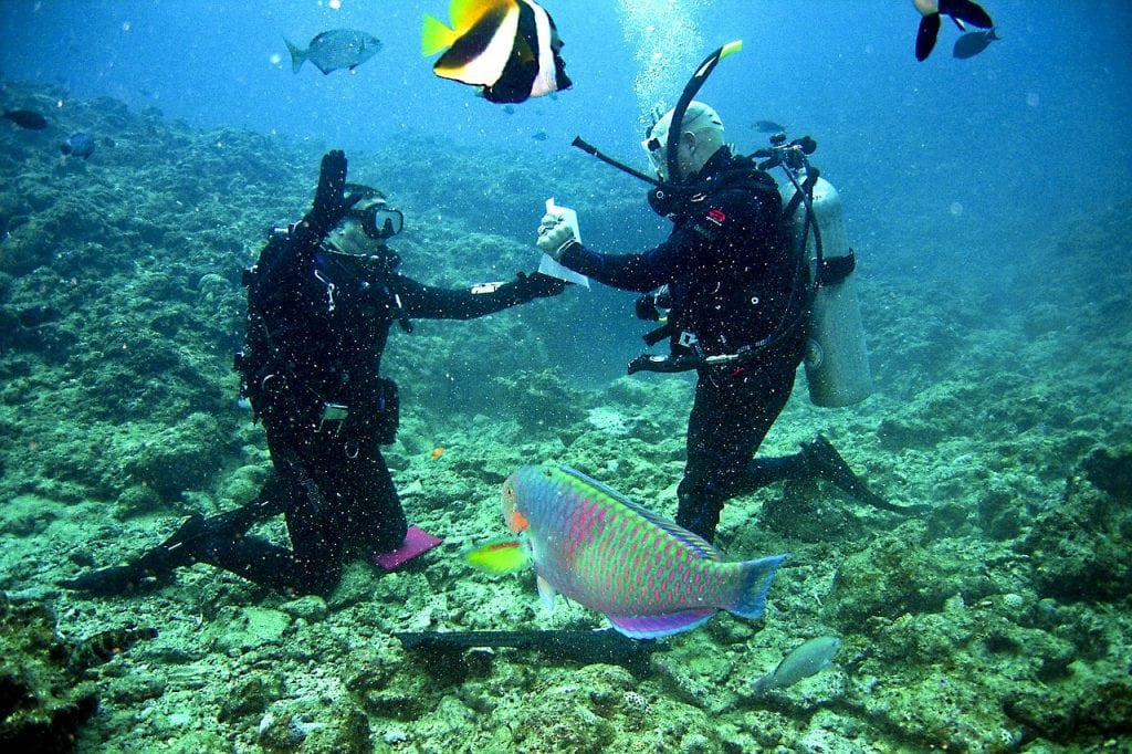 learning to dive in thailand is a great experience