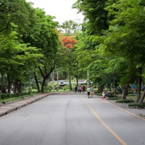 OASIS IN THE CONCRETE JUNGLE: PARKS IN BANGKOK