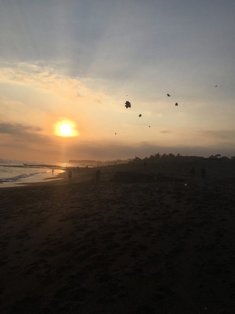 THE ULTIMATE CANGGU EXPERIENCE GUIDE: MUST DOS FOR EVERY CANGGU TRAVELER